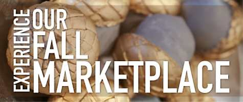 Experience our Fall Marketplace!