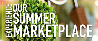 Experience our Summer Marketplace