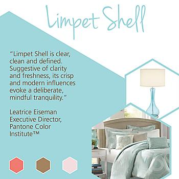 Pantone Color Series: Limpet Shell