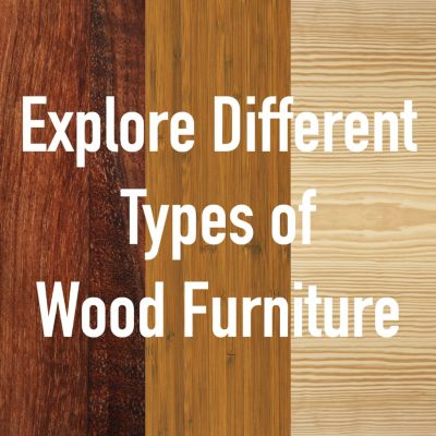 Types of Wood for Furniture Explained Infographic