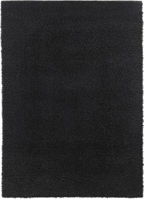 Ashley Caci Black 5' X 7' Rug