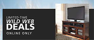 Limited Time! WILD WEB DEALS!