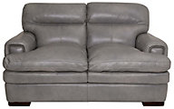 La-Z-Boy Jake 100% Leather Loveseat