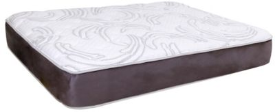 Omaha Bedding Invigorate Gel Memory Foam Collection
