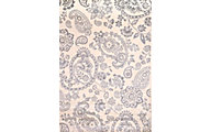 Sams International Sonoma Neutral 5' X 8' Rug