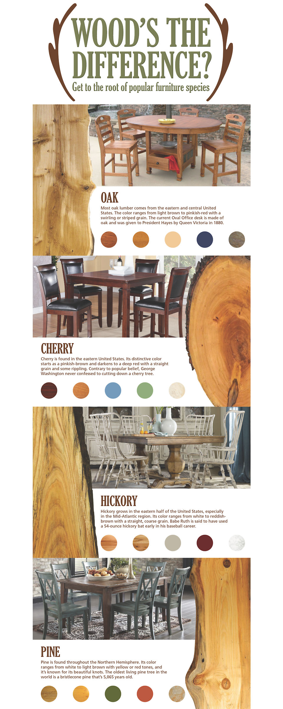 Oak, cherry, hickory and pine are popular wood species used in furniture production.